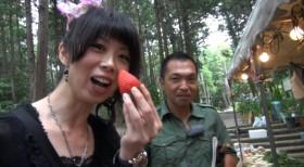 賀茂神社苺