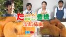 たべりん美味しい豊橋「次郎柿編」