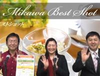 3月配信 春の花と牟呂カフェ